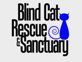 Blind Cat Rescue Roku